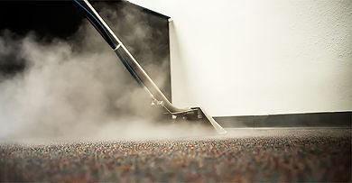 Dickson Carpet Cleaner, Kingston Springs, Pegram, White Bluff, Ann's Carpet Cleaner