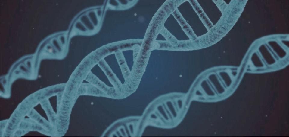 biologie-scientifique-traduction_edited_