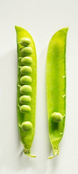 Orli-rhodes-about-page-pea-in-pod-close-