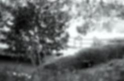 4T2A226300.jpg