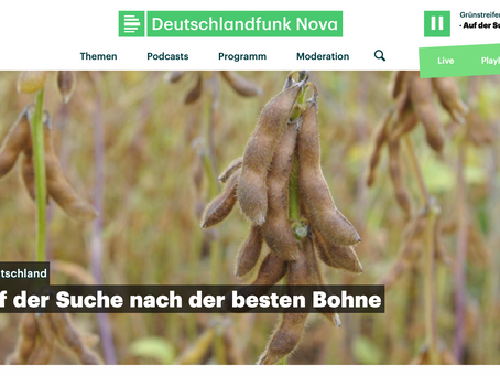 """Soy: on the hunt for the best bean"" interview about German soy"