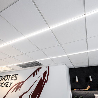 Coyotes Office-8.jpg