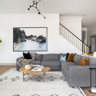 22-scandinavian modern living room-scand