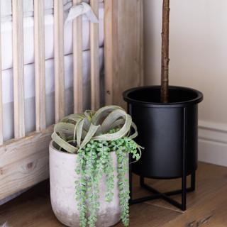 22-Nursery-room-design-air-plant-crib.jp