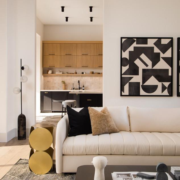 48-scandinavian modern living room-black