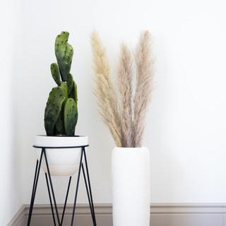 7-desert interior decor-cactus decor-pam