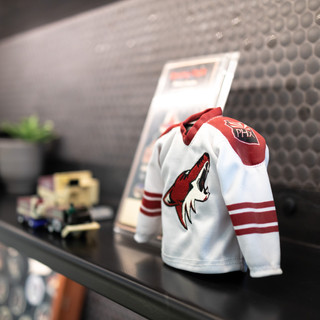 Coyotes Office-13.jpg