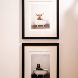 Kaitlyn Home Photos-79.jpg