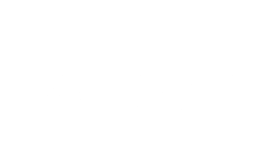 logo ney carnes.png