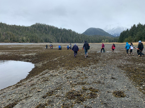 Sitka High School tudents participate in a Clam Camp curriculum, which the Sitka Tribe of Alaska VISTA designed and implemented with the 23 students.