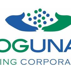 Toguna mining.jpg