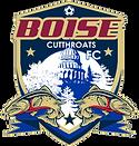 Boise Logo.png