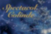 Spectacol coliffnde - decembrie 2019 (La