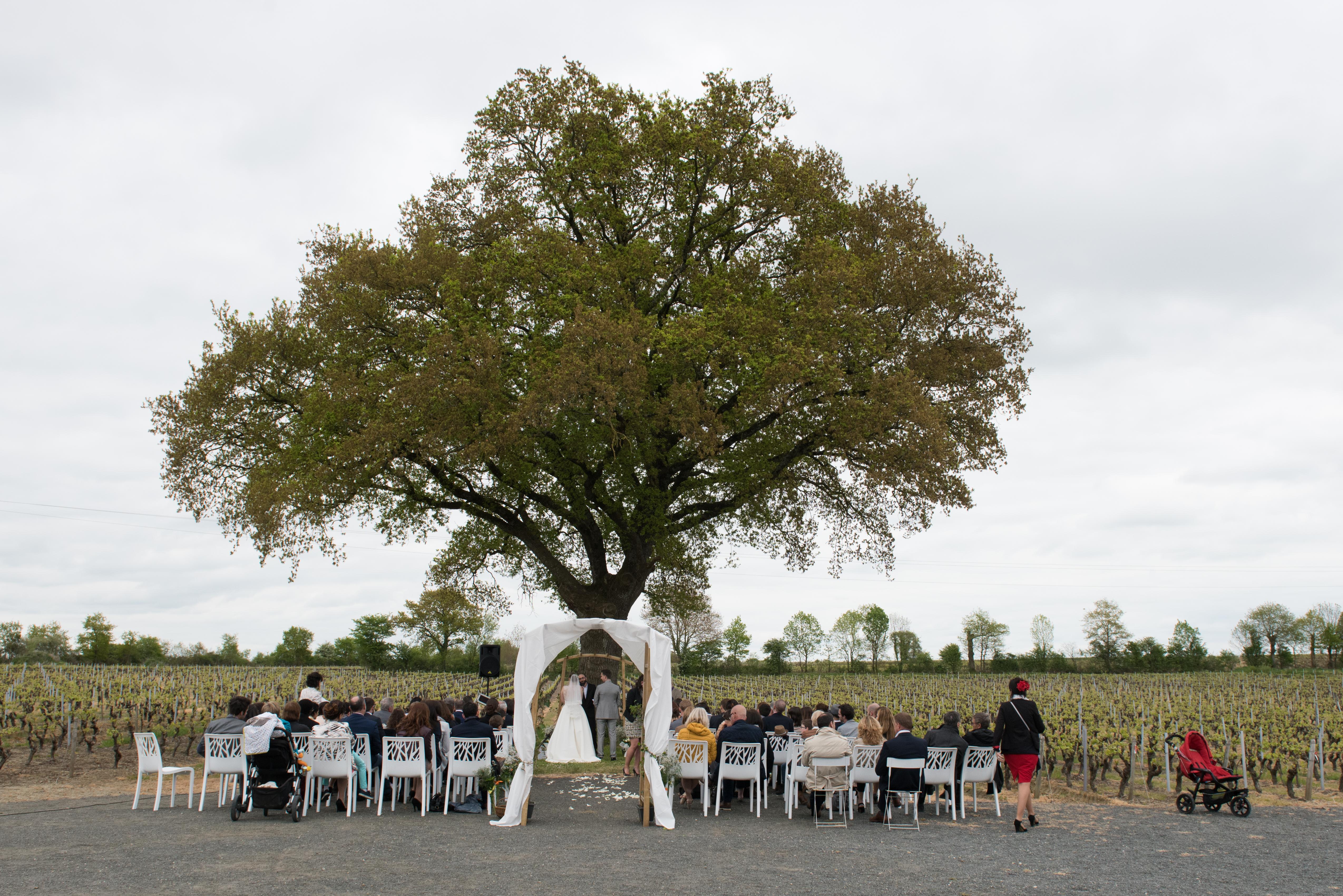 photo mariage ambiance ceremonie exterieur