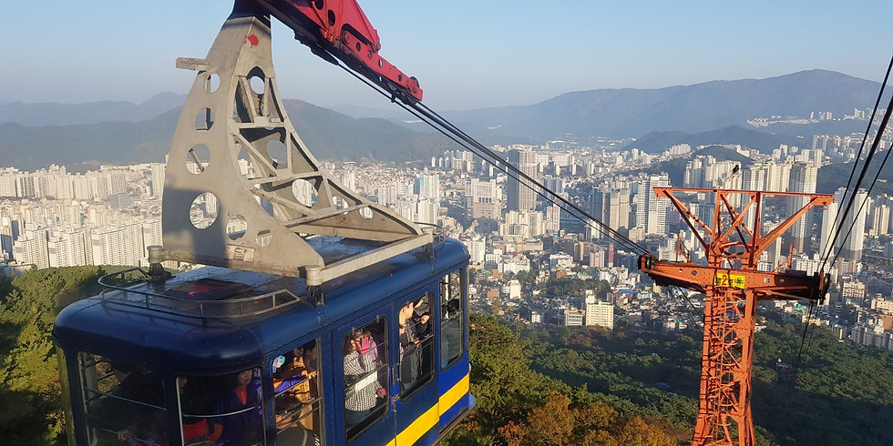 Relaxing Forest Meditation & Cable Car Tour