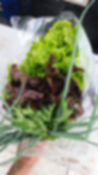 זר ירקות ירוק בעיר (4).jpeg
