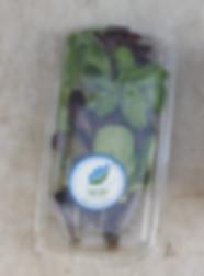 זר ירקות ירוק בעיר (5).jpg