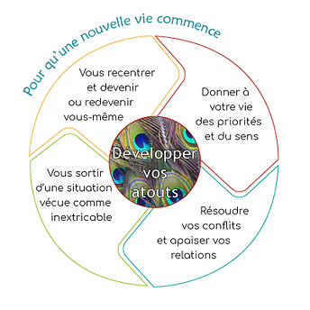 schema consultation individuelle.png