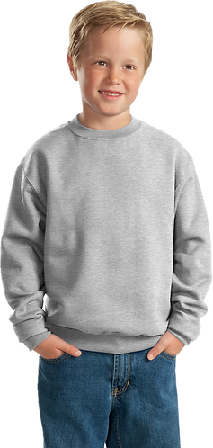Youth Sweatshirt - Embroidered