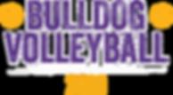 Bulldog Volleyball 2019.png
