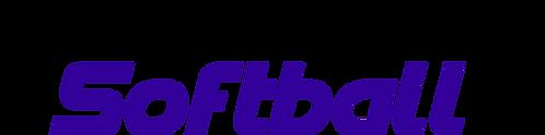 Purple Wave 16U Game Package