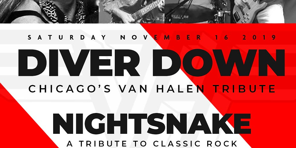 DIVER DOWN (VAN HALEN TRIBUTE) | NIGHTSNAKE (A TRIBUTE TO CLASSIC ROCK)