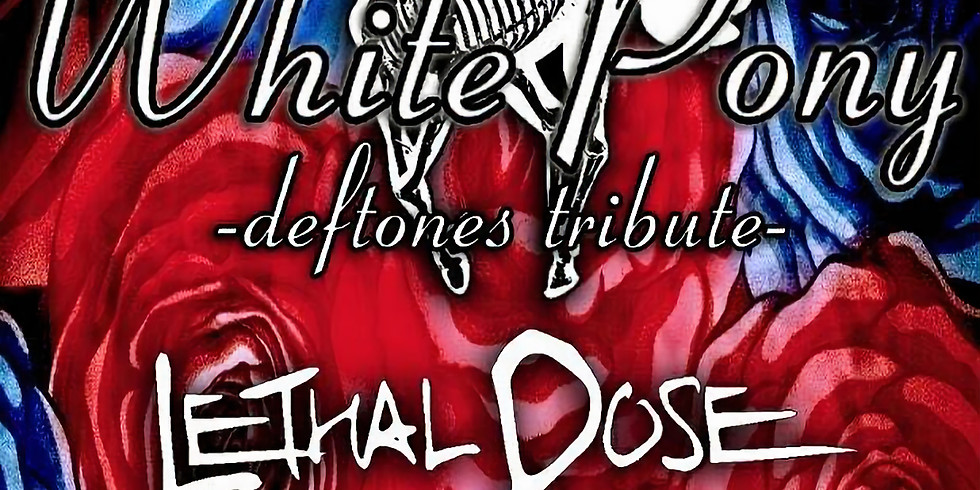 WHITE PONY (Deftones tribute)   LETHAL DOSE (Mudvayne tribute)   EXTRACTION POINT   COMFORTABLE LIAR (Chevelle tribute)