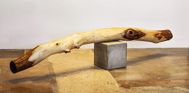 Untitled(balanced log).jpg