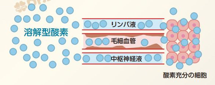 高気圧酸素カプセル 疲労回復 効果 酸素ルーム