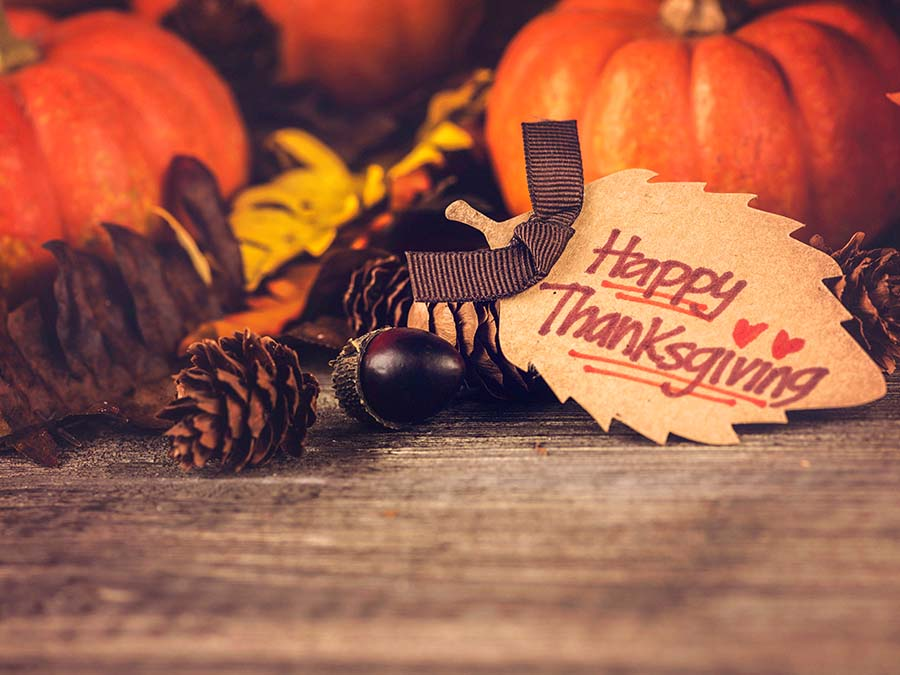 addthis-happy-thanksgiving