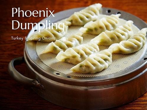 Phoenix Dumpling Kit | Turkey & Spring Onions