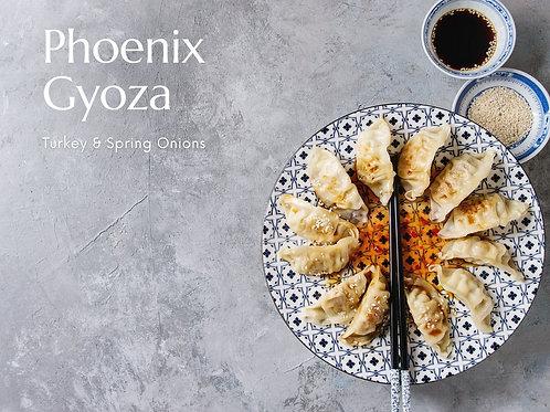 Phoenix Gyoza Kit | Turkey & Spring Onions