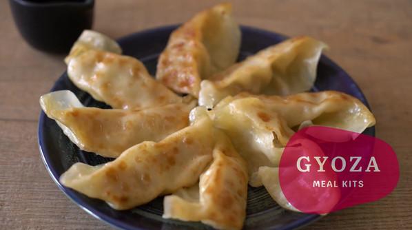 Handmade Gyoza Meal Kits by Yumo.mp4.mp4.mp4