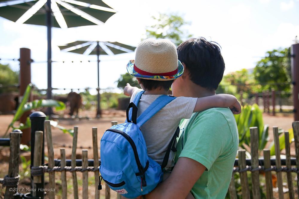 2歳9ヶ月頃の長男。初めての海外旅行先ハワイ・ホノルルでのワンシーン。