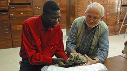 Witness History: Humanity's earliest ancestor