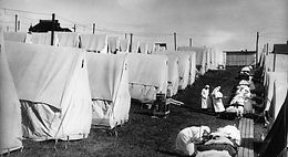 Pandemic: How the Flu Changed Wales