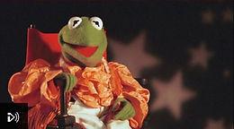 Witness: Kermit the Frog