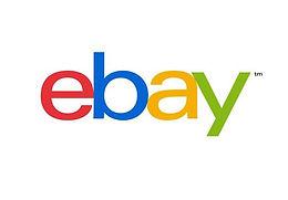 Witness: The Birth of Ebay