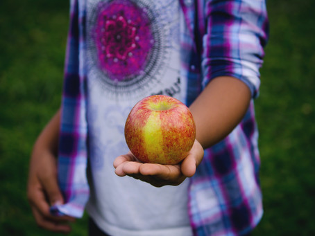 How Communities are Teaching Kids the Value of Food Security