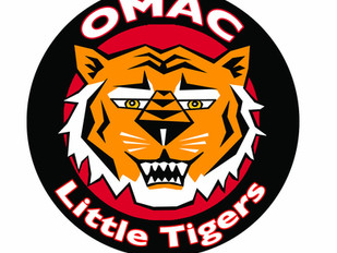 Term 5 Little Tiger Registration Open