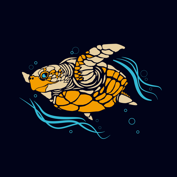 TURTLE NEW.png