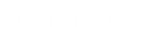 datadrive logo.png