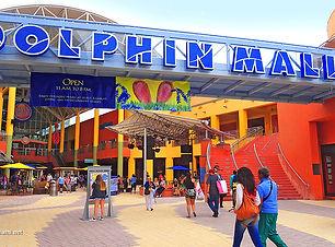 dolphin_principal_850x460.jpg