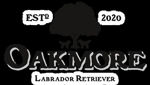 Oakmore – Labrador Retriever