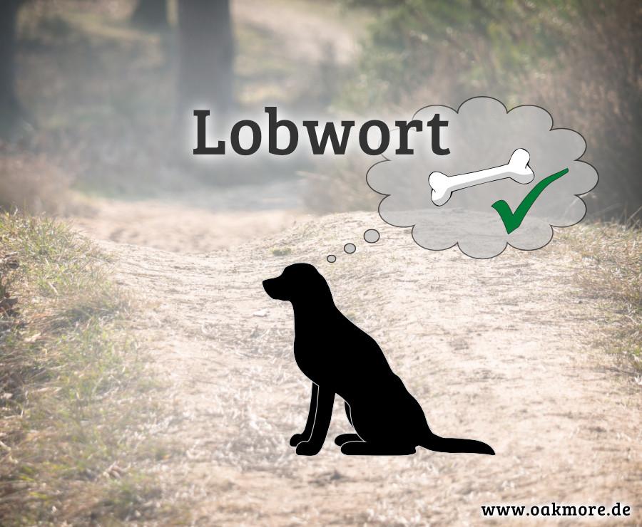 Lobwort