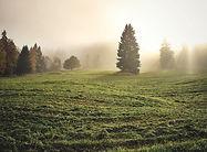 divine-light-1296353_edited.jpg