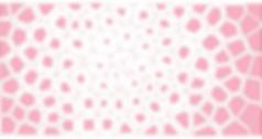 Screen Shot 2020-06-23 at 3.55.25 AM.png