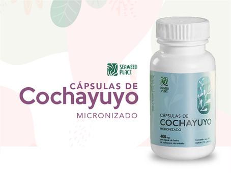 El Cochayuyo: Un superalimento que revolucionará tu dieta