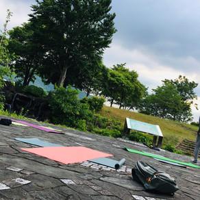 今朝のmorning yoga