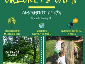 CRICKETS CAMP: Campamento de día para niñosde Infantil (3 a 6 años)